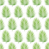 Palm leaf silhouette seamless pattern. Tropical leaves. Stock Image