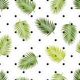 Palm leaf silhouettes and polka dot seamless pattern. Tropical leaves. Royalty Free Stock Images
