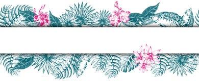 Palm Leaf Sketch11 Stock Image