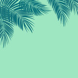 Palm Leaf Vector Background Illustration Royalty Free Stock Photos