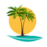 Palm Leaf Vector Illustration Stock Photo