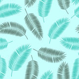 Palm Leaf Vector Seamless Pattern Background Stock Image