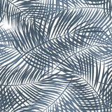 Palm Leaf Vector Seamless Pattern Background Illustration Royalty Free Stock Photo