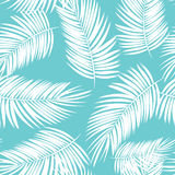 Palm Leaf Vector Seamless Pattern Background Illustration Royalty Free Stock Image