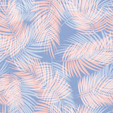 Palm Leaf Vector Seamless Pattern Background Illustration Royalty Free Stock Photography