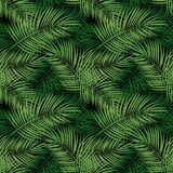 Palm Leaf Vector Seamless Pattern Background Illustration Royalty Free Stock Photos