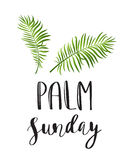 Palm leafs  icon. Vector illustration for the Christian holiday Palm Sunday Royalty Free Stock Images