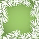 Palm leave border. Flat style. green and white. Stock Photo