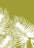 Palm leaves background. On green Royalty Free Stock Image