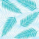 Palm leaves background. Illustration vector illustration