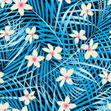 Palm leaves blue seamless pattern with frangipani flowers.  Stock Photography