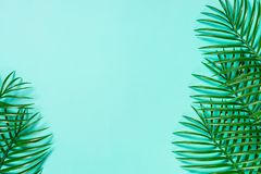 Palm leaves on blue top view. stock photo
