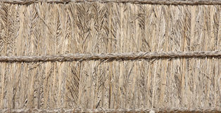 Palm leaves and branches thatched block Stock Photos