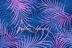 Palm leaves colors scene vector Stock Photos