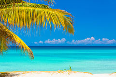 Palm leaves and the cuban beach of Varadero. Palm leaves framing a picture of an idyllic  tropical beach in Cuba Royalty Free Stock Photos