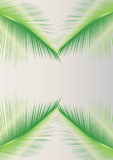 Palm leaves design. Can be used by many companies Stock Photos