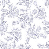 Palm leaves. Doodle style Stock Photos
