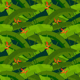 Palm leaves with flowers, seamless pattern Stock Images
