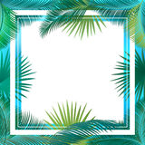 Palm leaves frame Sukkot Stock Photo