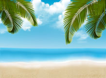 Palm Leaves On Beach. Stock Images