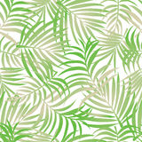 Palm leaves pattern background stock photo