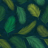 Palm Leaves Pattern 1 Royalty Free Stock Image