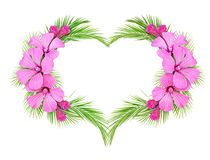 Palm leaves and pink flowers in a heart arrangement. Isolated on white background. Flat lay. Top view Royalty Free Stock Photos