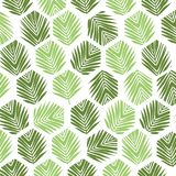 Palm leaves polygon pattern background. Flat style. Stock Images