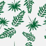 Palm leaves seamless pattern vector illustration. On white background vector illustration