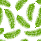 Palm leaves seamless Stock Photos