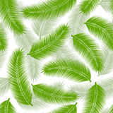 Palm leaves seamless Stock Photography
