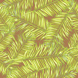 Palm leaves. Seamless vector background. Floral. Royalty Free Stock Images
