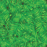 Palm leaves. Seamless vector background. Floral. Palm leaves. Seamless vector background. Floral background Royalty Free Stock Image