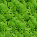 Palm leaves. Seamless vector background. Royalty Free Stock Photography