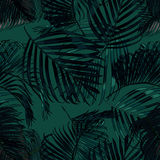 Palm leaves silhouette on the green background. Vector seamless pattern with tropical plants. Royalty Free Stock Photos