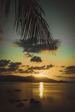 Palm leaves silhouette over sunset on Koh Samui. Stock Images