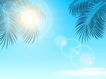 Palm leaves and sun on blue background Royalty Free Stock Photos