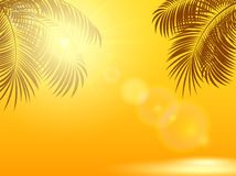 Palm leaves and sun on orange background Royalty Free Stock Photography
