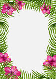Palm leaves and tropical flower background Stock Photos