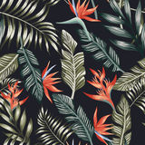 Palm leaves tropical flowers seamless black background royalty free illustration