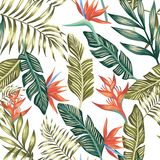 Palm leaves tropical flowers seamless white background. Seamless vector pattern of tropical palm leaves and flowers. Fashion nature floral beach wallpaper on a Stock Image