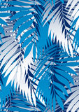 Palm leaves. Vector illustration of some tropical palm leaves Stock Image