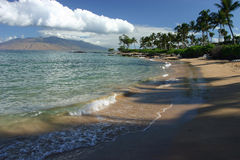 Palm lined beach in Maui Royalty Free Stock Photography