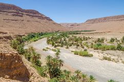 Palm lined dry river bed with red orange mountains near Tiznit in Morocco, North Africa Stock Image