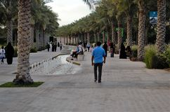 Palm lined Park walkway Stock Photography