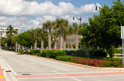 Palm lined street. In Fort Lauderdale, Florida Royalty Free Stock Photography