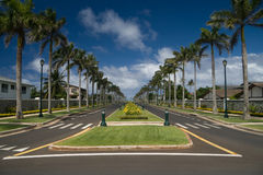 Palm-lined street. A luxurious residential street lined with palm trees Royalty Free Stock Image