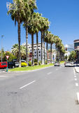 Palm-lined street in Puerto de la Cruz Royalty Free Stock Image