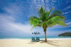 Palm lounge. View of nice coconut palm and two chairs with umbrella beneath stock photo