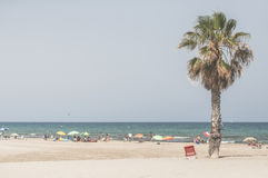 Palm and many people on the beach. Spain Royalty Free Stock Photos
